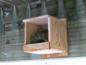 Bridge 1 nest box