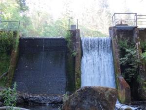 dipper nest site, 6-5-2014, reservoir dam